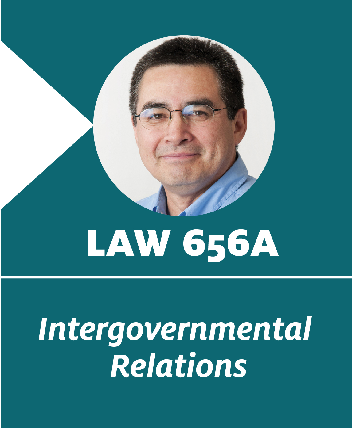 intergovernmental relations The division of intergovernmental relations serves primarily as the liaison between all levels of government on behalf of the county executive.